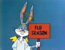 Flu Season 2012-2013